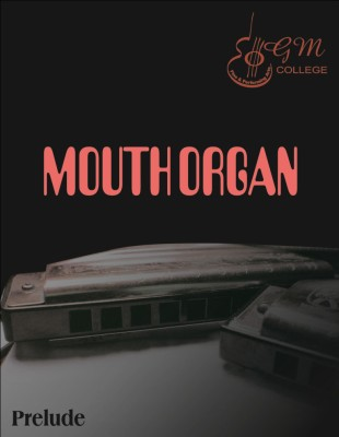 Mouthorgan Harmonica Book